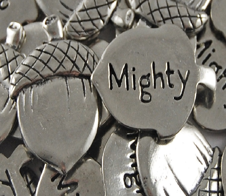 Acorn - Mighty Inspiration Coin